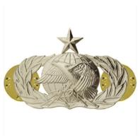 Vanguard AIR FORCE BADGE: LOGISTICS: SENIOR - MIDSIZE