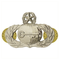 Vanguard AIR FORCE BADGE: INTELLIGENCE: MASTER - MIDSIZE