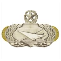 Vanguard AIR FORCE BADGE: HISTORIAN: MASTER - MIDSIZE