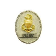 Vanguard COAST GUARD BADGE: ENLISTED ADVISOR E7 UNIT - MINIATURE