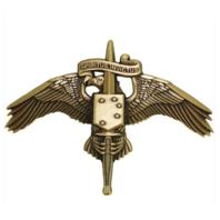 Vanguard MARINE CORPS BADGE MARSOC BRONZE MARINE CORP FORCES SPECIAL OPS COMMAND