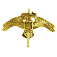 Vanguard MARINE CORPS BADGE: MARSOC MARINE CORPS FORCES SPECIAL OPS COMMAND
