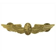 Vanguard NAVY BADGE: FLIGHT NURSE - REGULATION SIZE