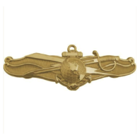 Vanguard NAVY BADGE: INFORMATION DOMINANCE WARFARE OFFICER