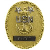 Vanguard NAVY IDENTIFICATION BADGE: FLEET MASTER E9 CPO - REGULATION SIZE