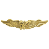 Vanguard NAVY BADGE: AVIATION SUPPLY OFFICER - MINIATURE, MIRROR FINISH