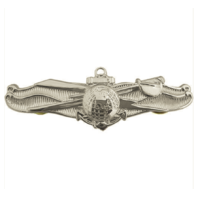 Vanguard NAVY BADGE: ENLISTED INFO DOMINANCE WARFARE - MINIATURE, MIRROR FINISH