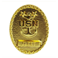 Vanguard NAVY BADGE: FLEET MASTER E9 CHIEF PETTY OFFICER - MINIATURE