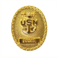 Vanguard NAVY BADGE: ENLISTED ADVISOR E-9 FORCE - MINIATURE