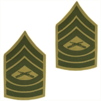 Vanguard MARINE CORPS CHEVRON: MASTER SERGEANT GREEN EMBROIDERED ON KHAKI, MALE