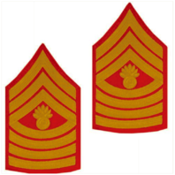 Vanguard MARINE CORPS CHEVRON: MASTER GUNNERY SERGEANT - GOLD ON RED FOR MALE