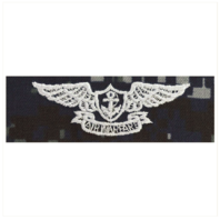 Vanguard NAVY EMBROIDERED BADGE: AVIATION WARFARE - TYPE I BLUE DIGITAL