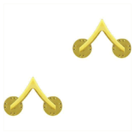 Vanguard ARMY CHEVRON: PRIVATE - 22K GOLD PLATED