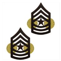 Vanguard ARMY CHEVRON: SERGEANT MAJOR - BLACK METAL