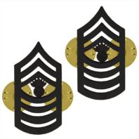 Vanguard MARINE CORPS CHEVRON: MASTER GUNNERY SERGEANT BLACK METAL, SOLID BRASS