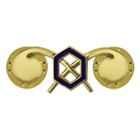 Vanguard ARMY OFFICER BRANCH OF SERVICE COLLAR DEVICE: CHEMICAL 22K GOLD PLATED