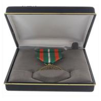 Vanguard Coast Guard Achievement Medal Presentation Set