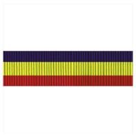 Vanguard US Navy Presidential Unit Citation Ribbon Unit