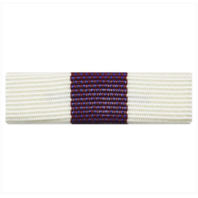 Vanguard RIBBON UNIT #3300