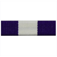 Vanguard RIBBON UNIT #3405