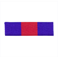 Vanguard RIBBON UNIT #3410