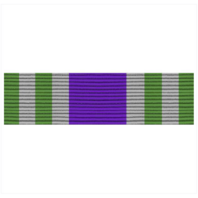 Vanguard ROTC RIBBON UNIT # N-1-9
