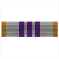 Vanguard ARMY ROTC RIBBON UNIT: N-4-2: AJROTC RECRUITING