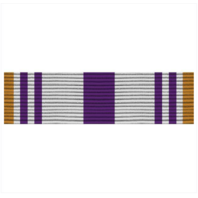 Vanguard ARMY ROTC RIBBON UNIT: N-4-5: AJROTC PUBLIC ACHIEVEMENT
