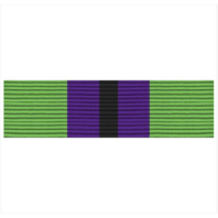 Vanguard ARMY ROTC RIBBON UNIT: R-3-10: SMP PARTICIPATION