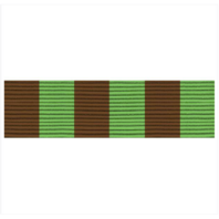 Vanguard ARMY ROTC RIBBON UNIT: R-3-8: DRILL TEAM