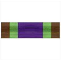 Vanguard ARMY ROTC RIBBON UNIT: R-4-1: MS-I COMPLETION