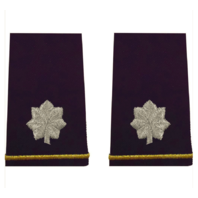 Vanguard ARMY EPAULET: LIEUTENANT COLONEL - SMALL