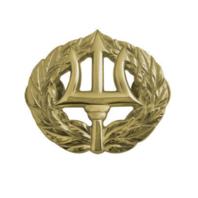 Vanguard NAVY BADGE: COMMAND ASHORE - MINIATURE, MIRROR FINISH
