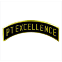 Vanguard ROTC ARC TAB: PT EXCELLENCE