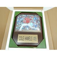 "MLB 1215HAMELSTEX Texas Rangers Cole Hamels Player Plaque, 12""x15"""
