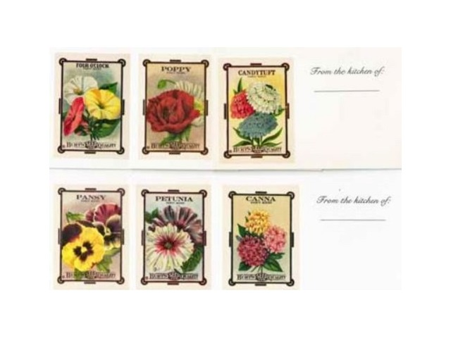 Old Print Factory New Blank Recipe Cards Set of 12 Assorted Flowers