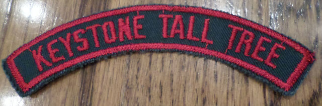 Vintage Girl Scout Uniform Patch Gs Keystone Rocker Bar Tab Red Grey-Green