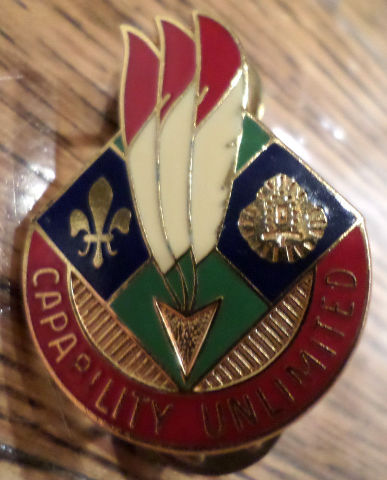 Us Army 120Th Supply And Service Battallion Capability Unlimited Hat Lapel Pin