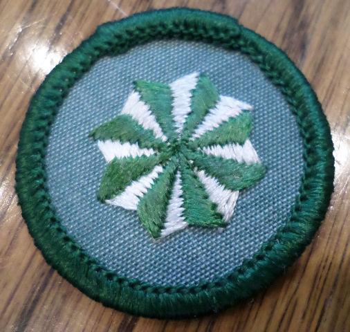 Jr. Girl Scout Green Junior Merit Badge Active Citizen