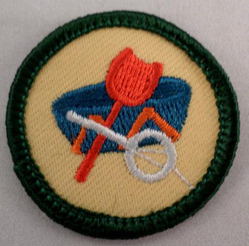 Girl Scout Gs Uniform Patch Junior Local Lore #Gsgr