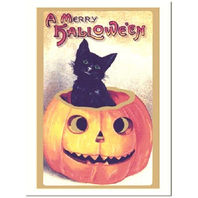 Black Cat In A Pumpkin Halloween Greeting Card And Envelope #Shk-6