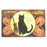Halloween Black Cat And Pumpkin Vintage Replica Post Card #Shk-10
