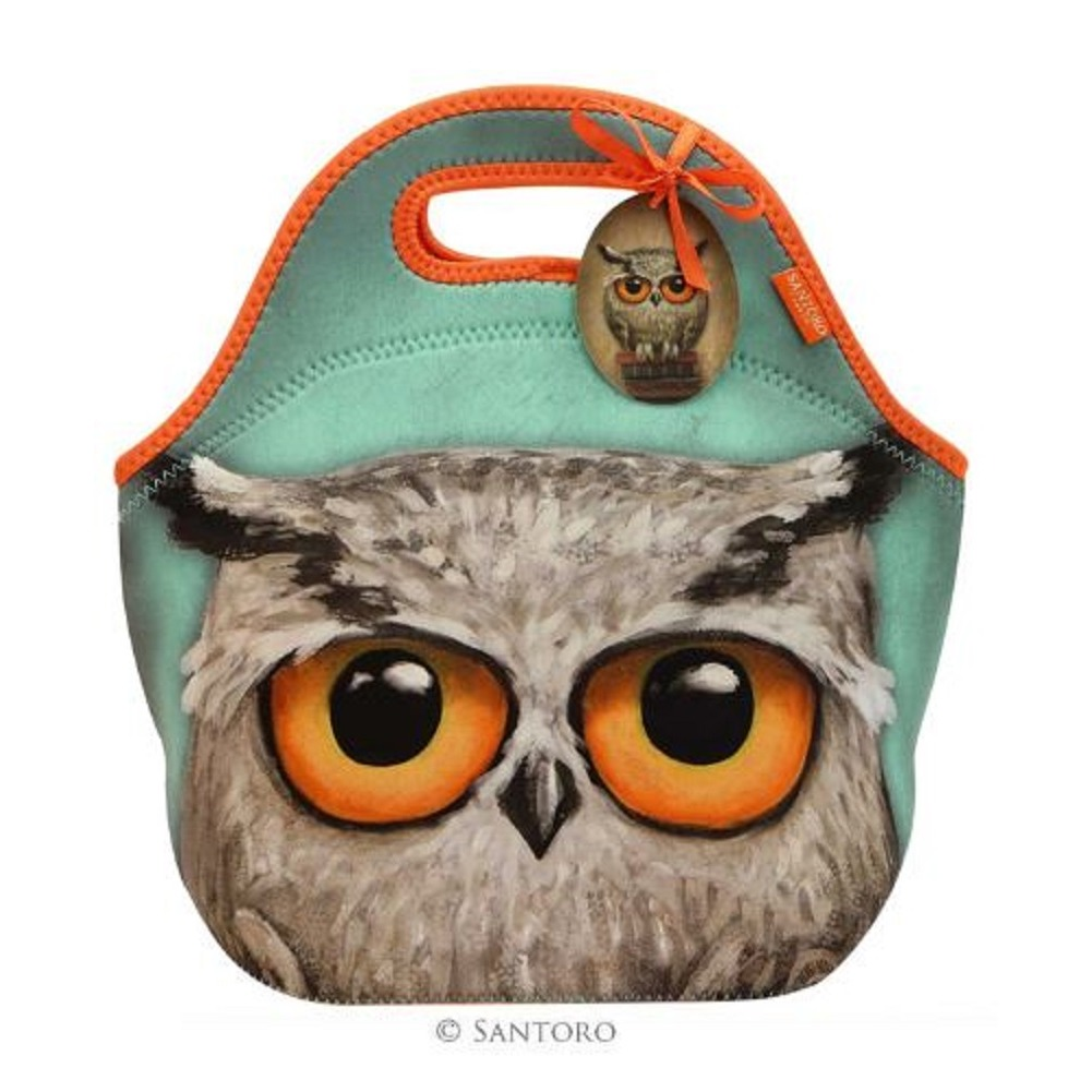 Santoro London Handbag Purse Neoprene Lunch Bag Book Owls