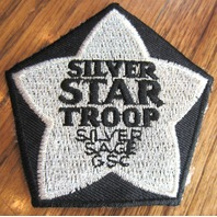 Girl Scout Patch Super Troop Gsc Silver Star