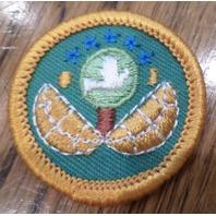 Jr. Girl Scout Green Merit Badge Gs Dabbler Junior Uniform Patch