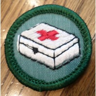 Jr. Girl Scout Green Junior Merit Badge Home Health And Safety