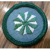 Jr. Girl Scout Green Junior Merit Badge Active Citizen