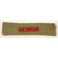Bsa Boy Scout Uniform Patch Senior red and white rocker bar stripe