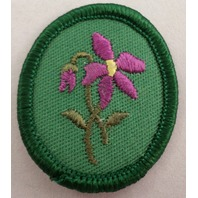 "Recently Retired Girl Scout Troop Crest ""Violet"" Uniform Patch"