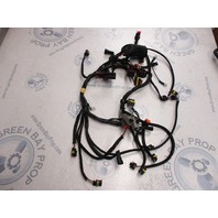 0586973 Evinrude Etec Outboard Engine Motor Wire Harness 2008-2010 75 90 HP